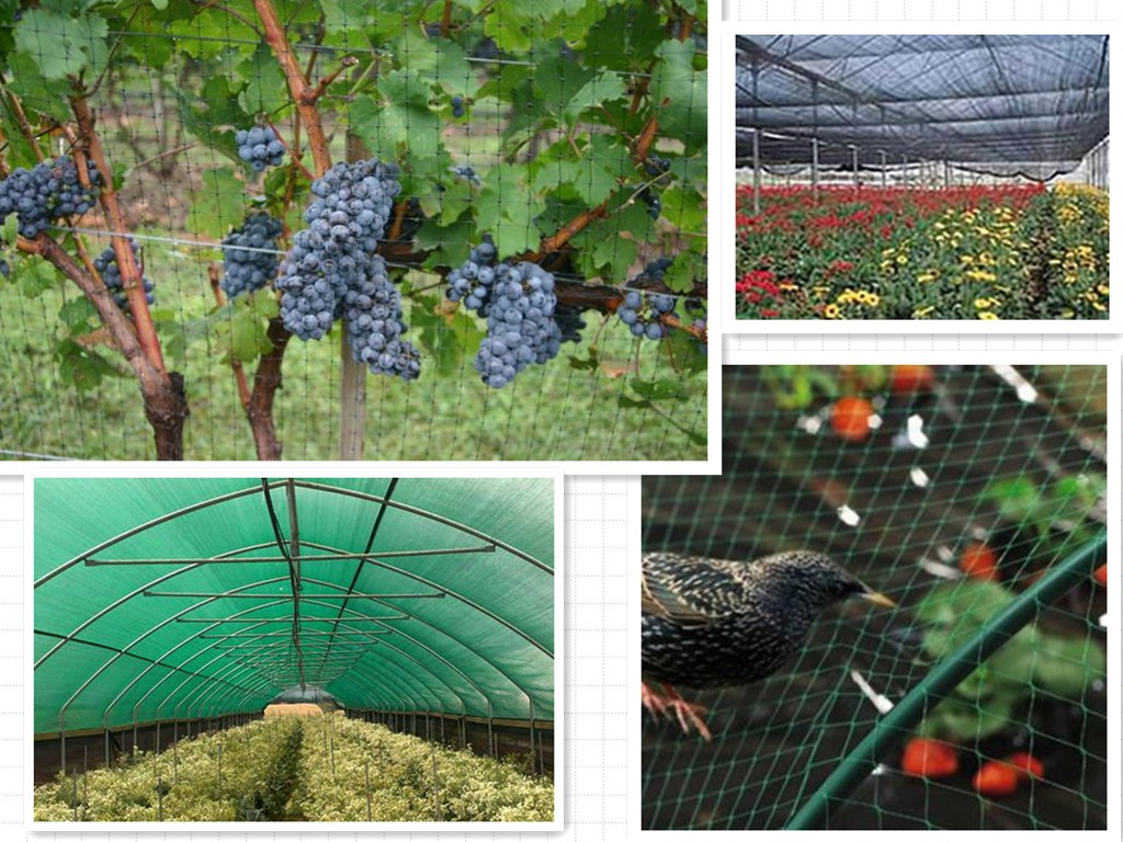 Garden Netting,Plastic Garden Netting,Vegetable Garden Netting