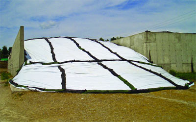 Silage Bags3