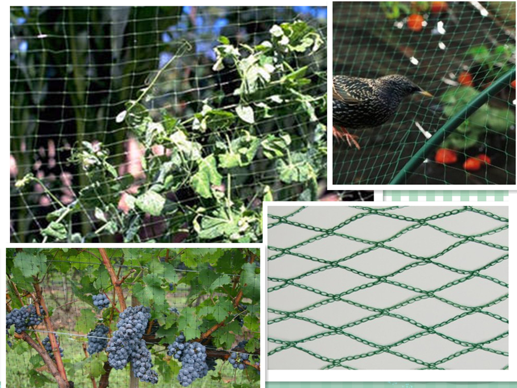 Bird Netting,Garden Bird Netting,Fruit Tree Bird Netting,Vineyard Bird Netting